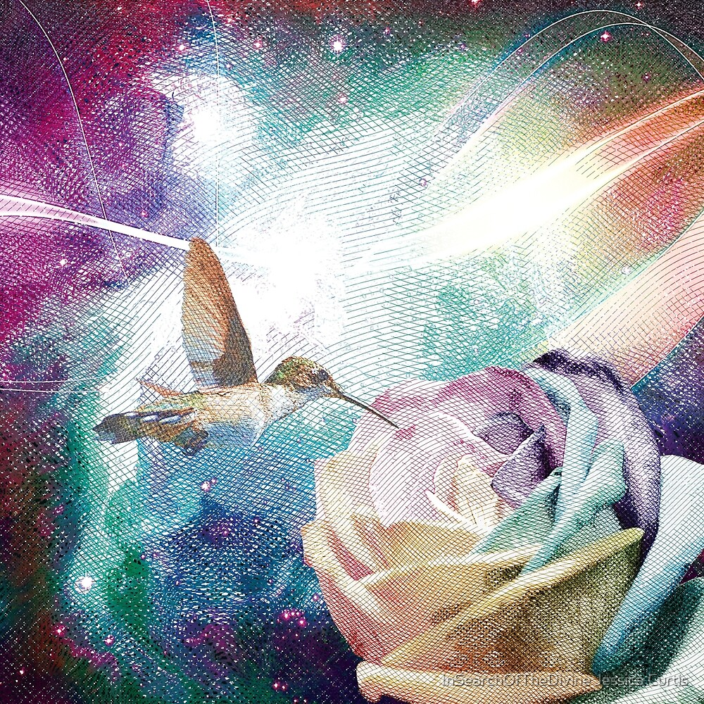 Rose Orion Hummingbird by InSearchOfTheDivine Jessica Curtis
