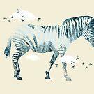 Zebra by Vin  Zzep