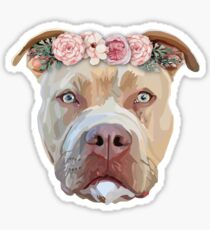 Pretty Pitbull Sticker