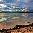 Pretty Sky Messy Shoreline by Carolyn  Fletcher