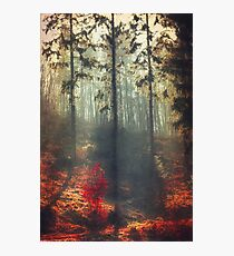 weight of light Photographic Print