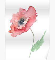 Venetian Poppy Poster