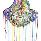 Gorilla by Calum Margetts Illustration