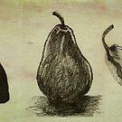 Pears ~ A Sketch Study by Adriana Glackin