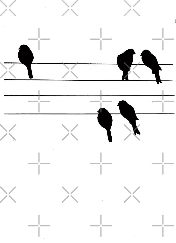 Birds by BlackDevil