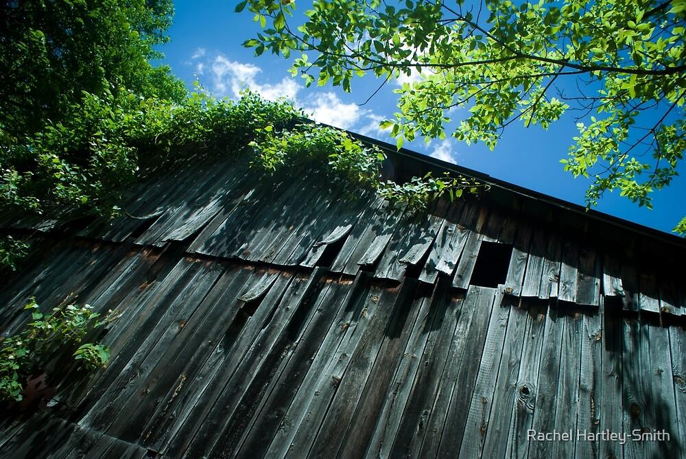 The Side of a Barn by Rachel Hartley-Smith