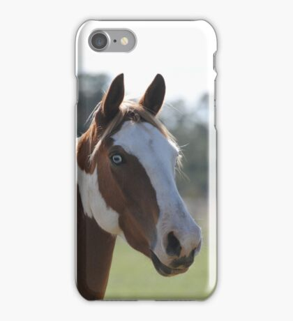 Moe- The Horse iPhone Case/Skin