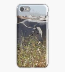 Droving Brahman cattle iPhone Case/Skin