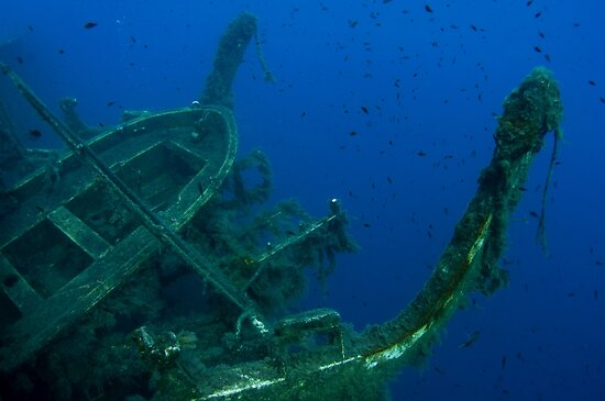 Diver at the MS Zenobia shipwreck.  by PhotoStock-Isra