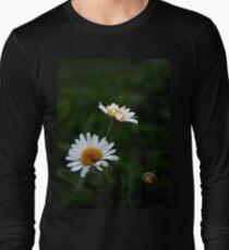 Daisies.  Long Sleeve T-Shirt