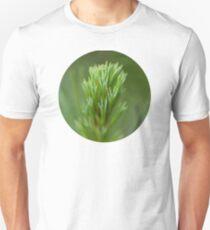Pine Needle Macro T-Shirt