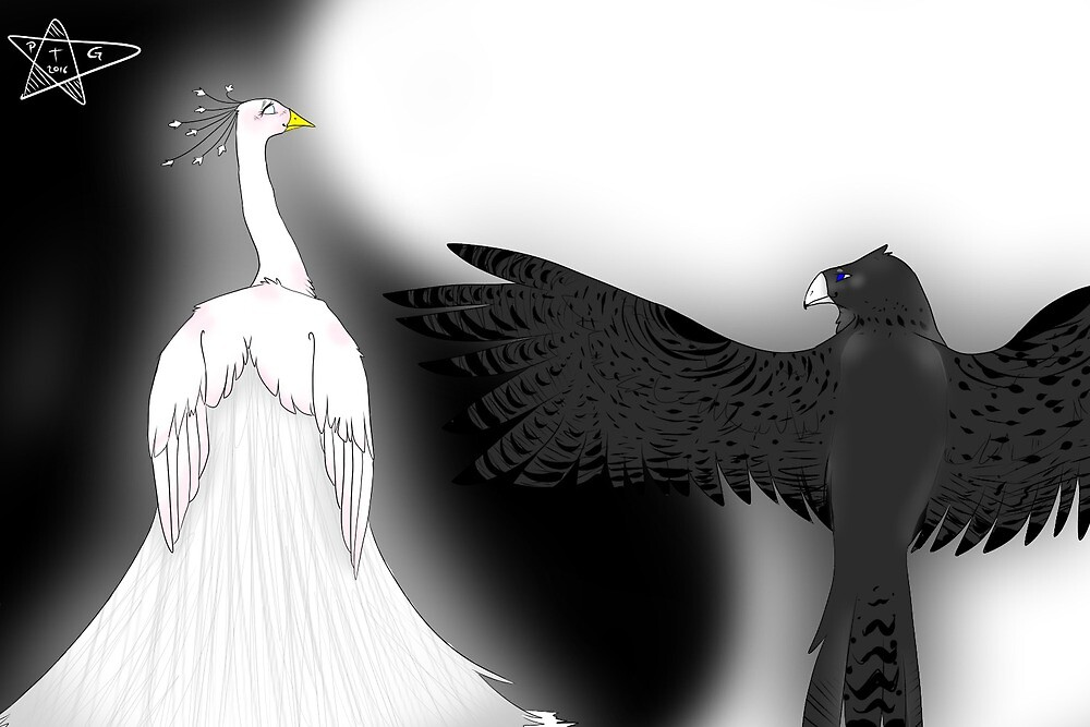 yin and yang birds by paintthegalexy