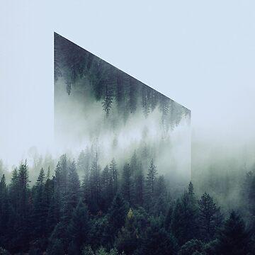 Misty Views by Letsmakemoney