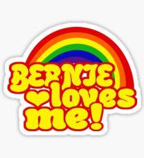 Bernie is Love Rainbow, Pride Week Swag, Feel the Bern unique Gifts Sticker