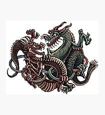 Dragons Fighting in Rings Photographic Print