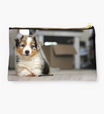 Australian Shepherd Puppy - Sam Studio Pouch