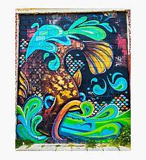 Street Art - Graffiti - Fremantle Western Australia 2015 Photographic Print