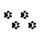 Black dog paws by RBBeachDesigns