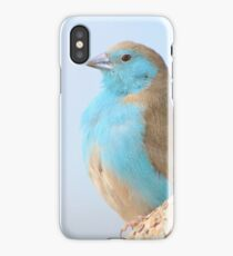 Blue Waxbill - Colorful Wild Birds from Africa iPhone Case/Skin