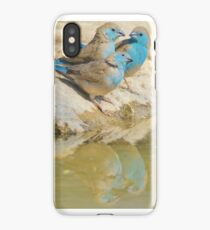 Blue Waxbill - Colorful Wild Birds from Africa - Brotherhood of Joy iPhone Case/Skin