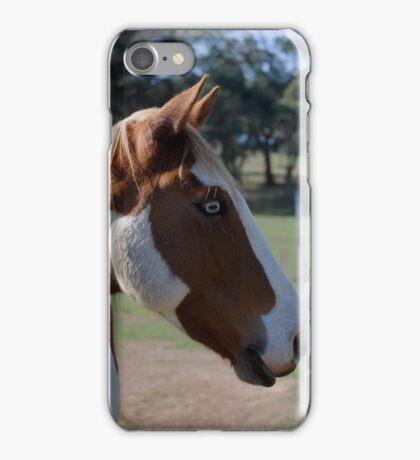 Moe Jingles-The Horse  iPhone Case/Skin
