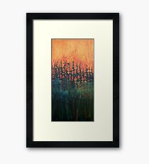 Forest Glow #2 Framed Print