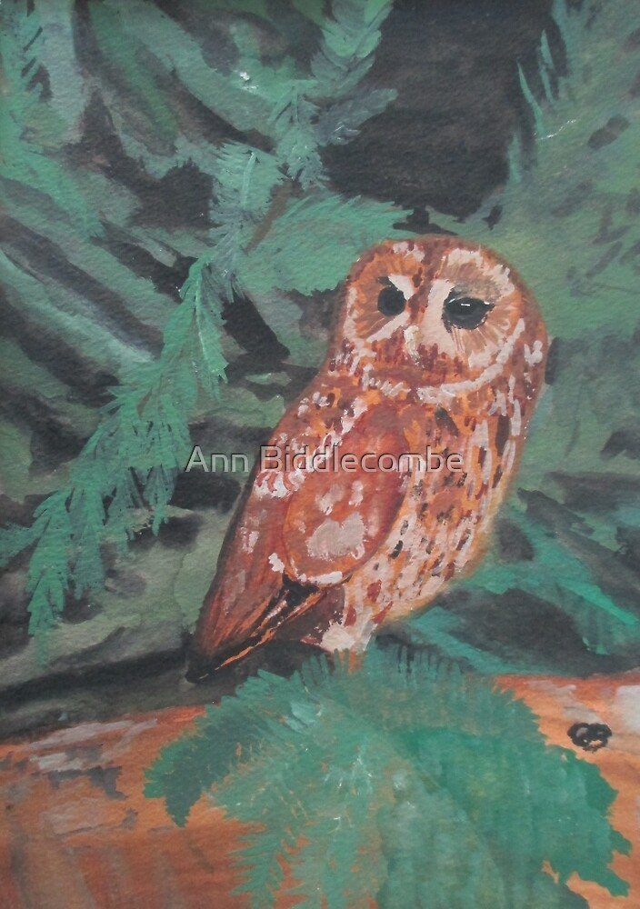 Lone Owl by Ann Biddlecombe