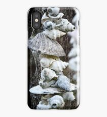 Sea Shell composition iPhone Case/Skin