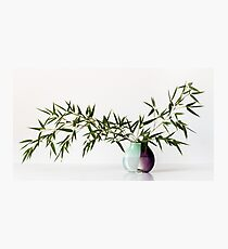 Vase With Bamboo Photographic Print