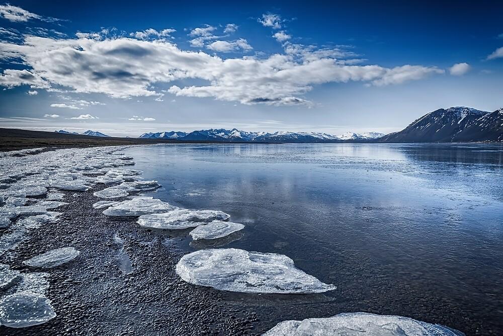 Broken Ice by Svetlana Sewell