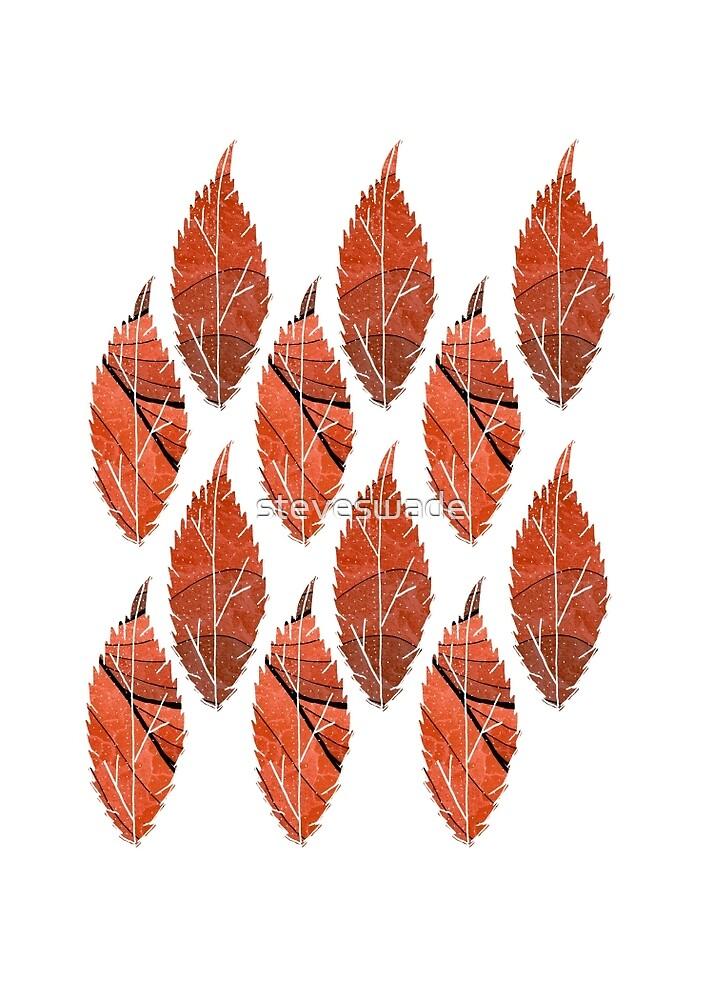 Red Leaf Pattern by steveswade