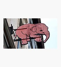 Seeing Pink Elephants? Photographic Print