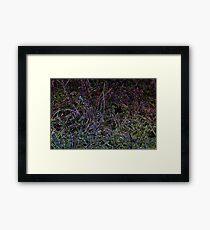 Glowing Grass Framed Print