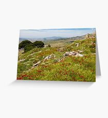 Poppies in Pergamon Greeting Card