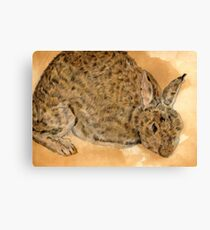 Tea & Coffee stained Rabbit Canvas Print