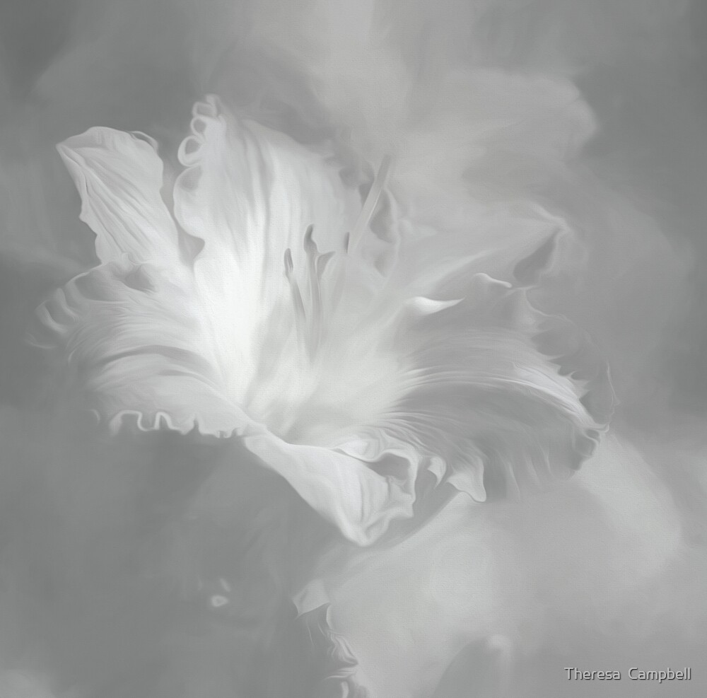 Lily In Fog Monochrome by TheresaC1953