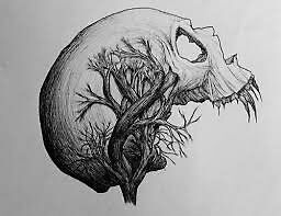 Skull  by putitinthetrash