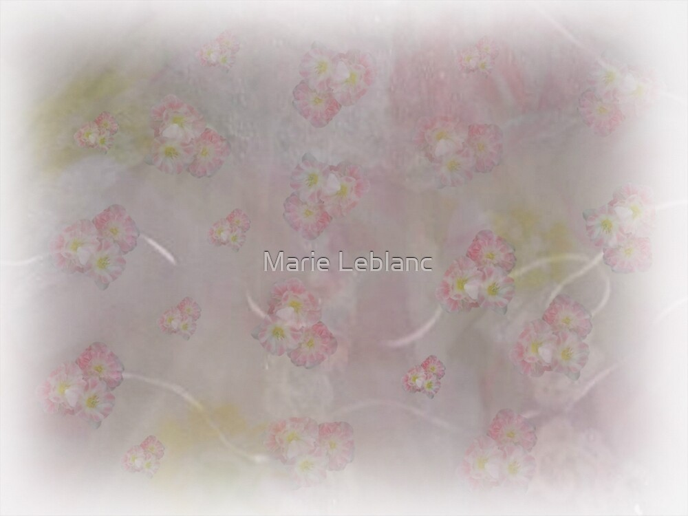 FLOWER VAIL by Marie Leblanc