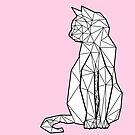 «Gato geométrico» de Freddie O'Brion