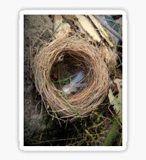 empty nest Sticker