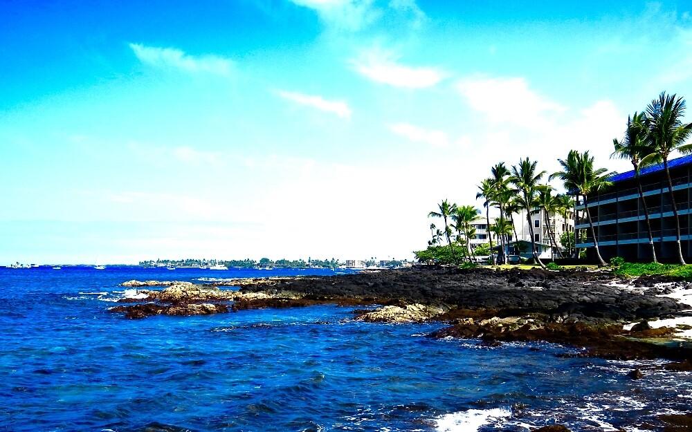 Coast of Hawaii by gabluv27