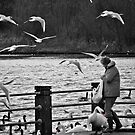 Feed the Birds by Carol Bleasdale