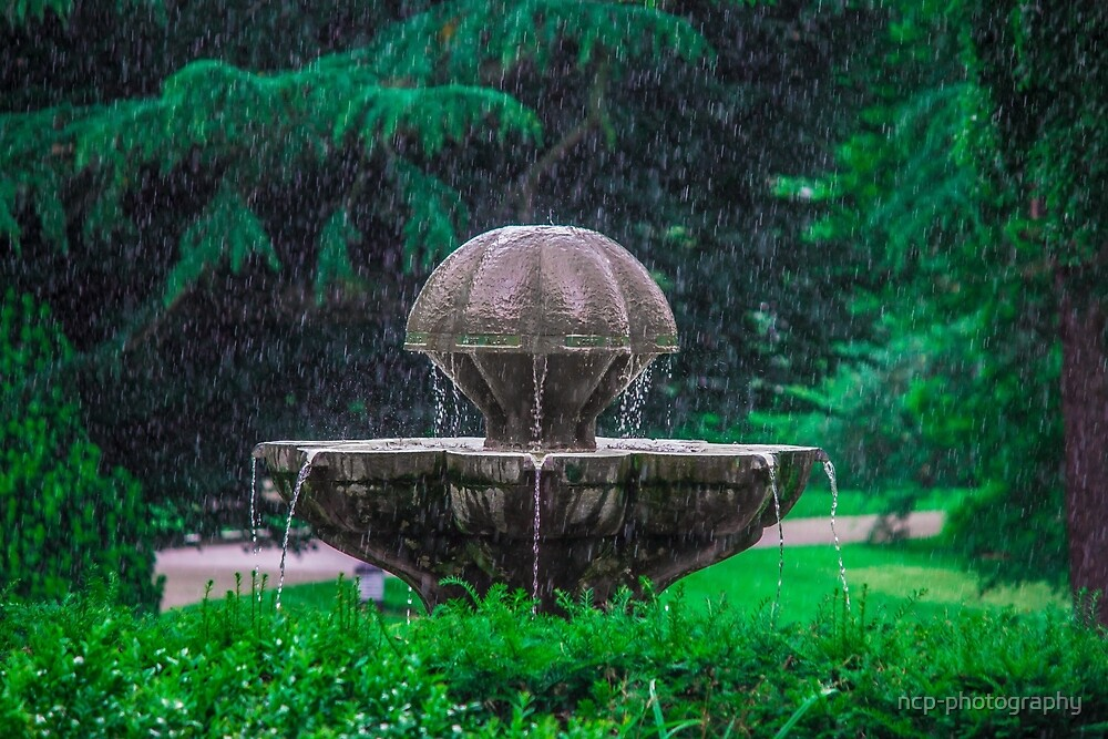 Vista - Natures Fountain by ncp-photography