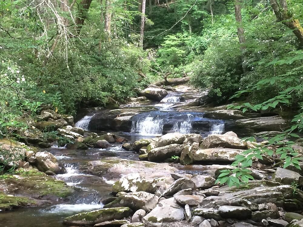 Smokey Mountains- Amazing Waterfalls/ Stream by BansheeCrash