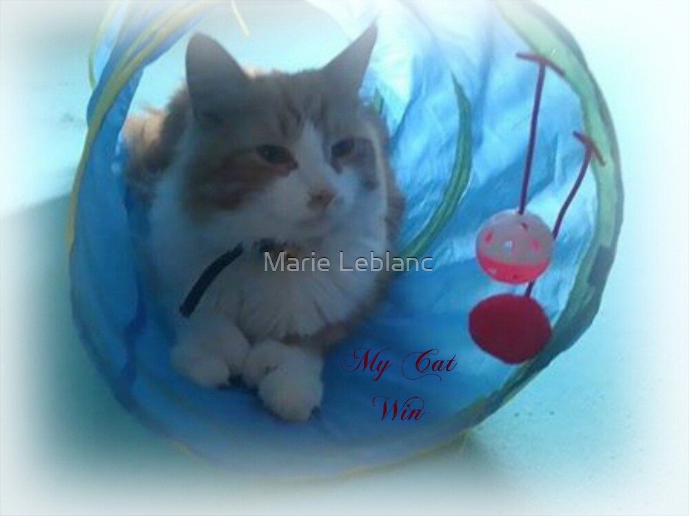 MY CAT WIN by Marie Leblanc