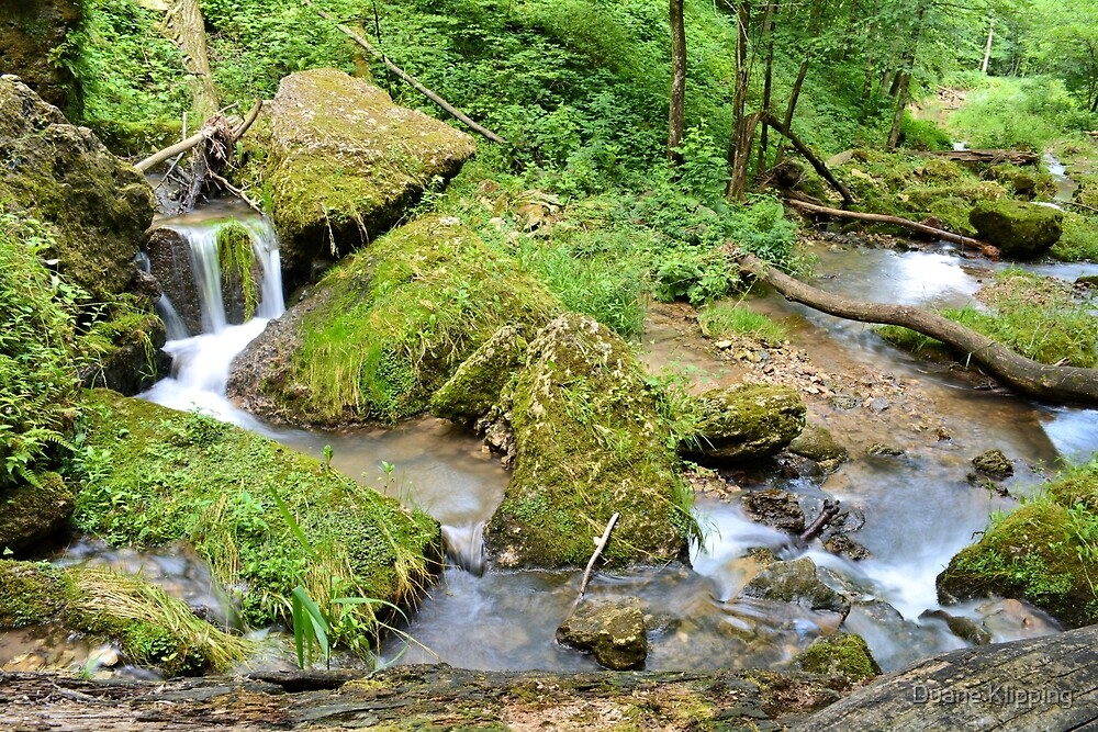 Mossy Green Brook by Duane Klipping