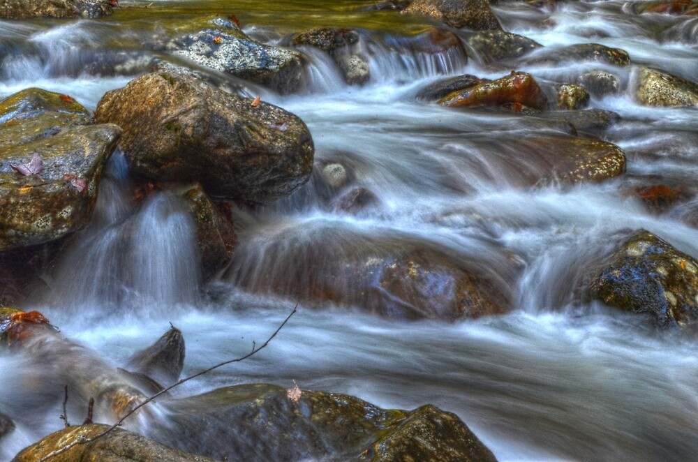 Running Water 1 by Ronald Williams