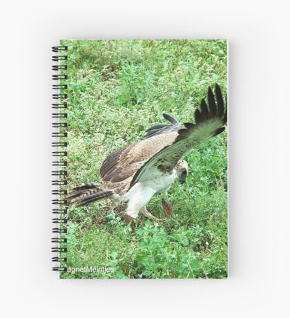 THE CATCH - MARTIAL EAGLE-Polematus bellicosus Spiral Notebook