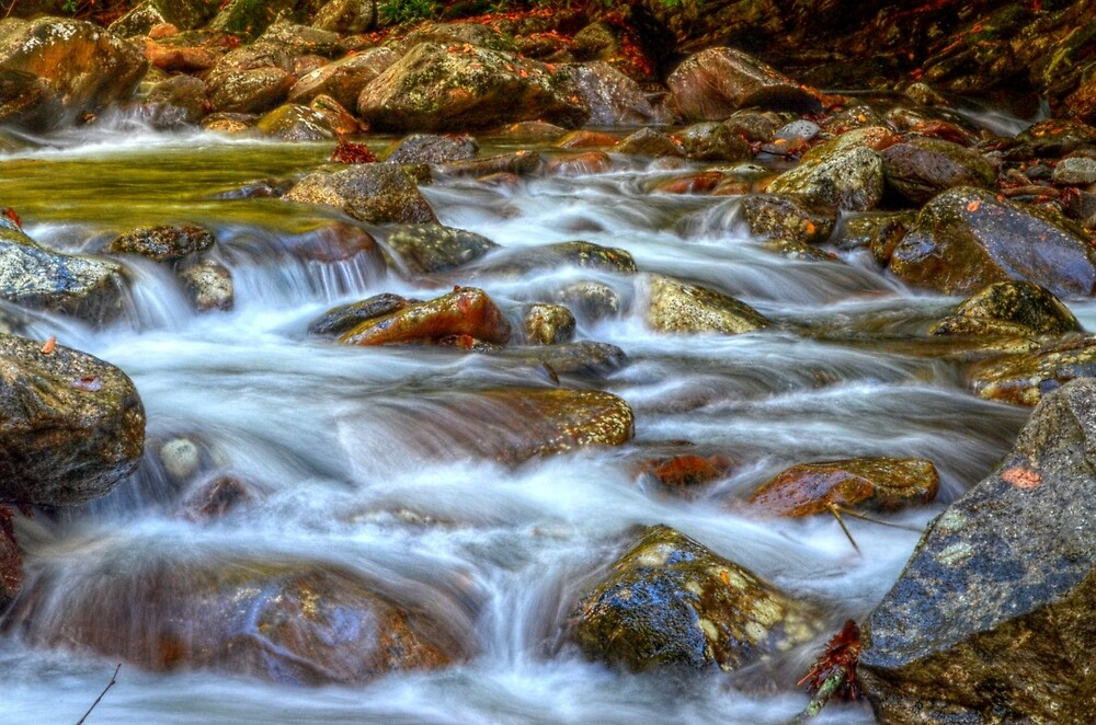 Running Water 2 by Ronald Williams