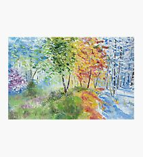 Seasons Photographic Print